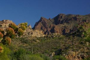 Mountains with Agave by PatGoltz