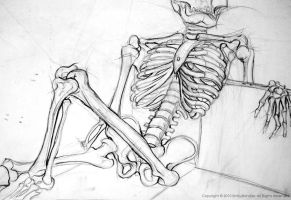 Lounging Skeleton by Skarlet-Raven