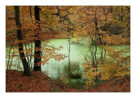 Green lake in autumn I by Barefeet-in-the-rain