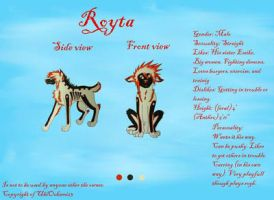 Royta reference sheet by UbiOokami23