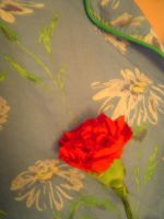 carnation on blue by FroggyDreams