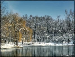 1 january 2011 on lake... by Iulian-dA-gallery