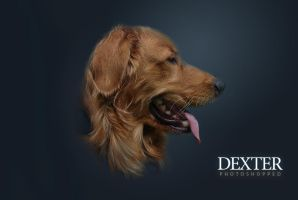 Dexter Photoshopped again by darksideoftheblues