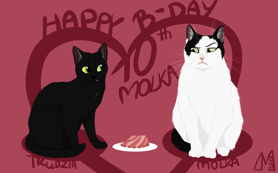 Molka's 10th birthday! by Manulfacture