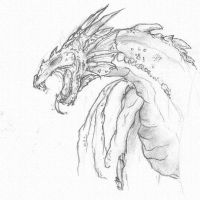 Dragon. by FoxHyena