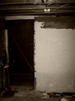 Old Basement Door by samaya-stock
