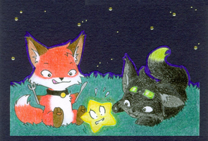 Foxes love stars by jeazard