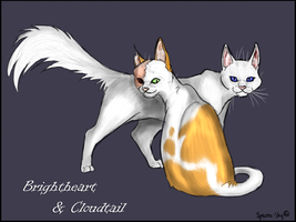 Cloudtail and Brightheart by Spectra-Sky