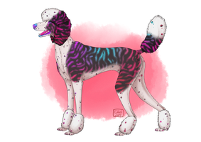 Fabulous Poodle Adopt 1 [OPEN] by Unlikely-Adopts