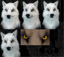 Second white wolf male head by SnowVolkolak