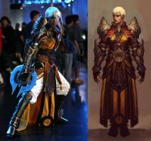 Diablo 3 Monk by ZerinaX