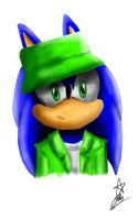 .:Sonic The Streetsweeper:. by Ran-TH