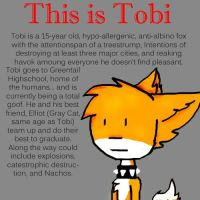 What is Tobi the fox by Yaki-Okami