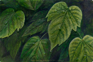 leaves by aldafea