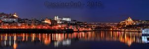 Pano of Porto. Viewed from V.N.Gaia by assincr0n0
