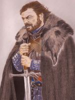 LORD EDDARD STARK by PIERNODOYUNA