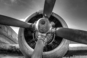 No. 92 ''Il-14 engine'' by dukezepar