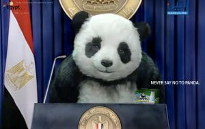 Never Say No To Panda by Bezmo