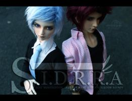 SIDRRA: Collectors by level-13