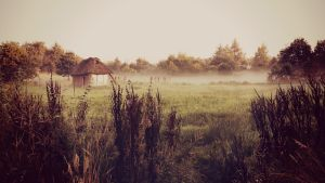 Abandoned cottage by CB4THERISE
