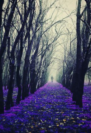 Arcade of the Enchanted Trees II by iNeedChemicalX