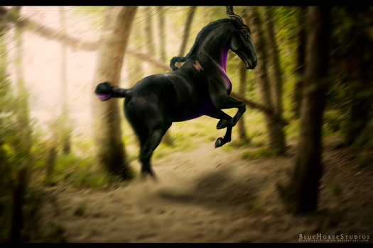 Maleficent by BlueHorseStudios