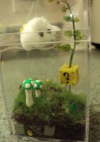 Mario Brothers Terrarium by Alien-Phant