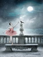 Ballet Night by Priitii