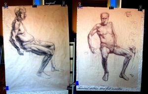 Charcoal Studies by matjosh