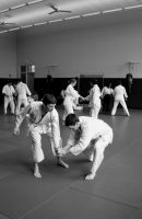 Aikido Seminar February 2014, 8 by bebelee