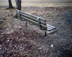 The Lonely Bench by peirrin
