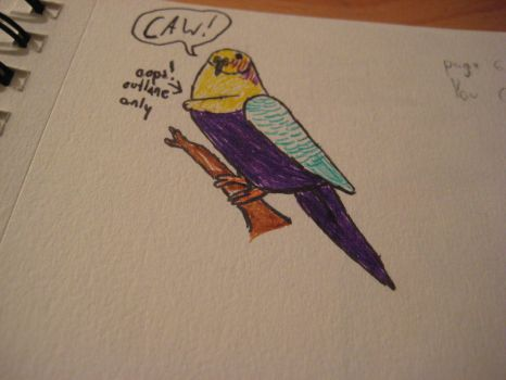 Parakeet Drawing. by The-Neuman-Show