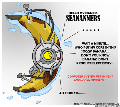 Portal 2 Tribute to SeaNanners by ElderKain