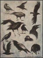 Ravens collage by Monecule