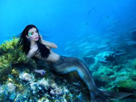 Mermaid by VampyrEmpress