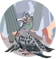 Optimistic Pigeon by Tozi