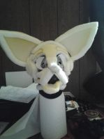Almost done- front by furryRaver21