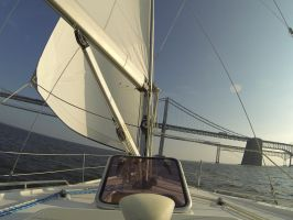 Evening Sail on the Chesepeake by ArloWalker
