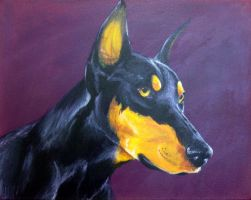 Doberman by MelvisMD