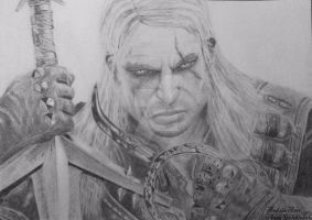 The Witcher by Anna655