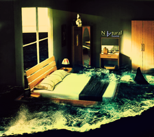 Natural home wild waters by duelord