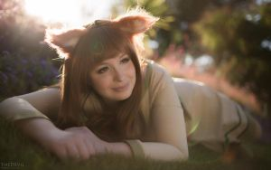 Spice and Wolf: Morning Sun by e-l-y-n-n