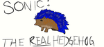 Sonic: The Real Hedgehog by martypunker