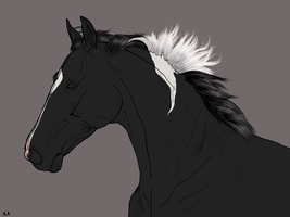 Shading contest - xcf-file by RvS-RiverineStables