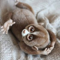 Loris [stuffed toy] by Irentoys