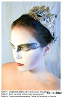 Black Swan FacePaint.12 by Della-Stock