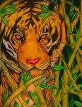 Crouching Tiger by AlbinoRaven666