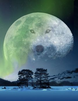 Wolf Moon by Wolverica
