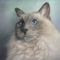 Mr Sweetbeastie by LouiseMarieFineArt