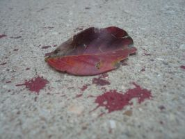 red leaves of a broken heart 2 by evleafimore